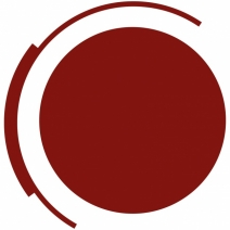 LogoNetzwerkSowi